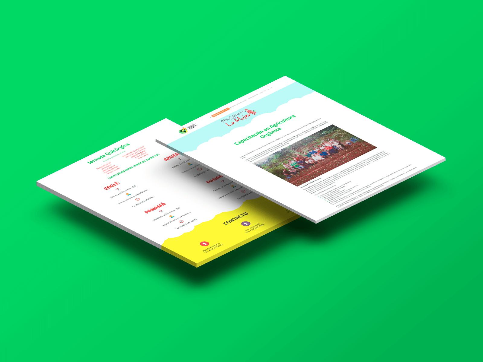 83pixeles | Asociación de Empresarias y Profesionales de Panamá | Diseño Web Adaptativo en Panamá